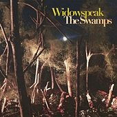 Play & Download The Swamps by Widowspeak | Napster