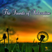 Play & Download The Sound of Relaxation, Vol. 2 by Various Artists | Napster