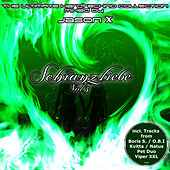 Schranzliebe, Vol. 3 - Mixed By Jason X by Various Artists