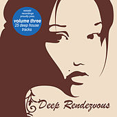 Deep Rendezvous, Vol. 3 by Various Artists