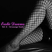 Play & Download Erotic Dreams, Vol. 3 - 16 Lounge Tracks by Various Artists | Napster