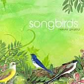 Songbirds by Nature Project