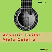 Acoustic Guitar e Viola, Vol.12 by Various Artists