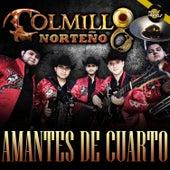Amantes de Cuarto - Single by Colmillo Norteno