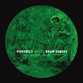 Play & Download Empire Soldiers Dubplate, Vol. 2 by Vibronics Brain Damage | Napster