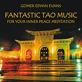 Play & Download Fantastic Tao Music for Meditation by Gomer Edwin Evans | Napster