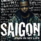 Pain In My Life by Saigon