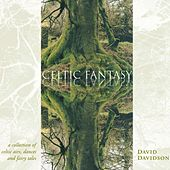 Celtic Fantasy by David Davidson