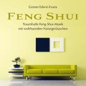 FENG SHUI mit wohltuenden Naturgeräuschen by Gomer Edwin Evans