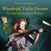 Play & Download Wonderful Violin Dreams for Relaxation by Gomer Edwin Evans | Napster