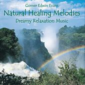 Play & Download Natural Healing Melodies for Relaxation by Gomer Edwin Evans | Napster