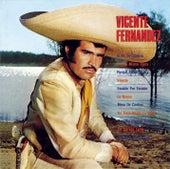 Vicente Fernandez (1st Album) by Vicente Fernández