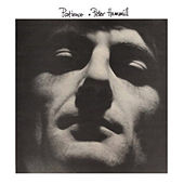 Patience by Peter Hammill