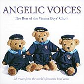 Play & Download The Best of the Vienna Boys' Choir by Various Artists | Napster