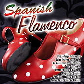 Play & Download Spanish Flamenco by Various Artists | Napster