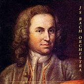 Play & Download Bach: Toccata and Fugue in D Minor, Air On the G String, Violin Concerto No. 1 in a Minor & Jesu, Joy of Man's Desiring - Pachelbel: Canon in D - Vivaldi: Concertos - Albinoni: Adagio - Rinaldi: Works - Frescobaldi: Organ Works - Paradisi: Toccata by Various Artists | Napster