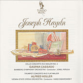 Play & Download Haydn: Cello Concerto in D Major No. 2, Hob. VIIb:2, Op. 101 & Trumpet Concerto in E-Flat Major, Hob. VIIe:1 by Various Artists | Napster