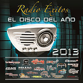 Play & Download Radio Éxitos El Disco Del Año 2013 by Various Artists | Napster
