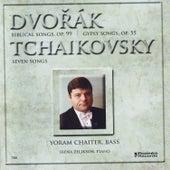 Dvorak / Tchaikovsky: Songs by Irena Zelikson