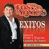Exitos by Los Yonics