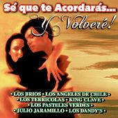 Sé que te Acordarás...y Volveré! by Various Artists