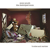 Play & Download The Destroyed Room by Sonic Youth | Napster