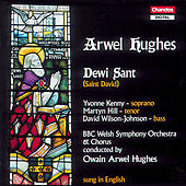 Hughes: Dewi Sant (St. David) by Yvonne Kenny