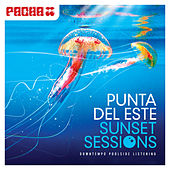Play & Download Pacha - Punta del Este Sunset Sessions by Various Artists | Napster