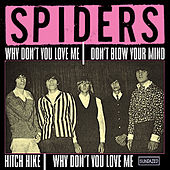 Why Don't You Love Me by The Spiders