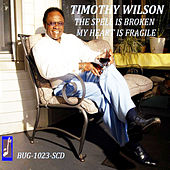 Play & Download The Spell Is Broken by Timothy Wilson | Napster
