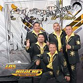 Play & Download Una Historia De Amor, Vol. 3. by Los Huaches De Tierra Caliente | Napster