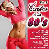 Play & Download Éxitos de los 80's Vol. 3 by Various Artists | Napster