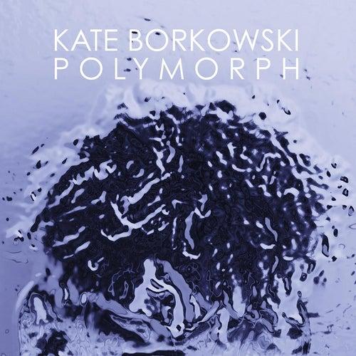 Polymorph by Kate Borkowski