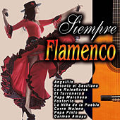 Play & Download Siempre Flamenco by Various Artists | Napster