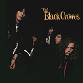 Shake Your Money Maker by The Black Crowes