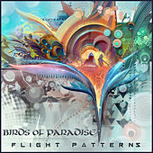 Flight Patterns by The Birds Of Paradise