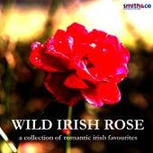 Wild Irish Rose - A Collection of Romantic Irish Favourites by Claire Hamilton