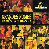 Grandes Nomes da Música Sertaneja by Various Artists
