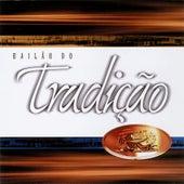 Play & Download Bailão do Tradição Ao Vivo by Grupo Tradição | Napster