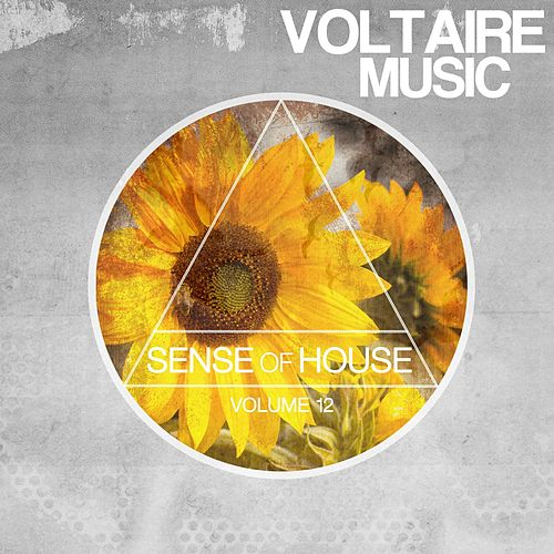 Sense of House, Vol. 12 by Various Artists