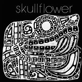 Kino I: Birthdeath by Skullflower