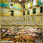Deconstruct to Construct - Selection of Asthetic Tech-House Tunes by Various Artists