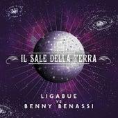 Play & Download Il sale della terra by Ligabue   Napster