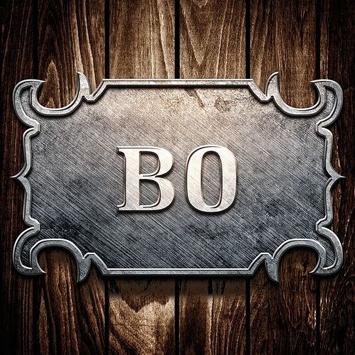 Bo by Bo Diddley