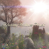 Relaxing Wellness Music by Various Artists