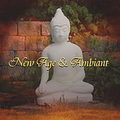 Play & Download New Age & Ambient Songs by Various Artists | Napster