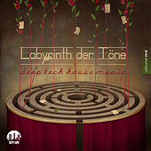 Labyrinth der Töne, Vol. 1 - Deep & Tech-House Music by Various Artists
