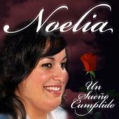 Un Sueño Cumplido by Noelia