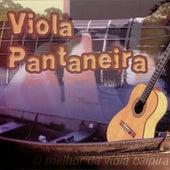 Viola Pantaneira by Various Artists