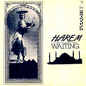 Waiting by Harem